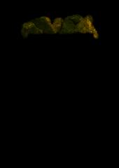 Электрокаменка «Эну 12» с испарителем