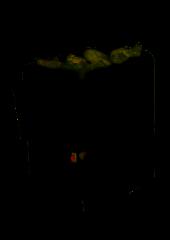 Электрокаменка «ЭНУ-Тандем 16» с испарителем